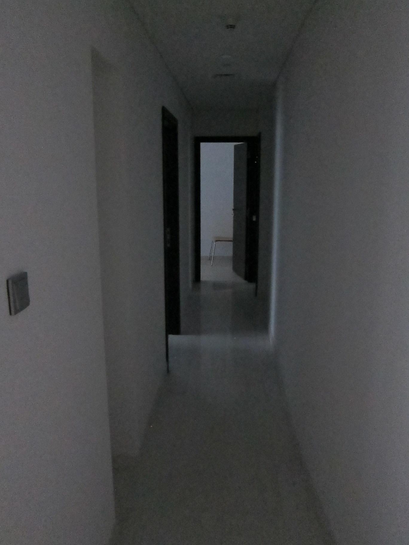 IMG_3369
